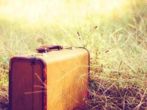 grass_leaving_suitcase-60fd05b1cb6101006c0e5e0815924937_h_large